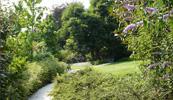 Galleria immagini dei giardini realizzati da romano giardini for Progettazione giardini lavoro
